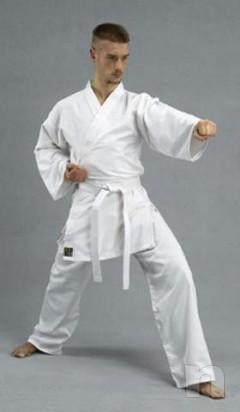 Stock karate taekwondo foto-11287