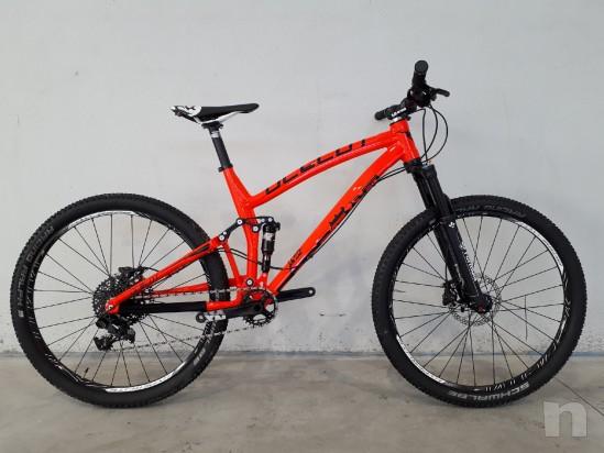 Mountain Bike Trail Pedroni Cycles Ocelot foto-12143