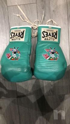 Guanti Cleto Reyes WBC 10oz foto-22573
