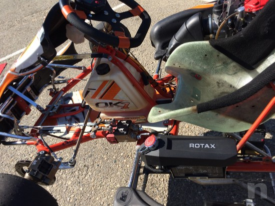 Kart OK1 - Rotax Max Evo foto-25520
