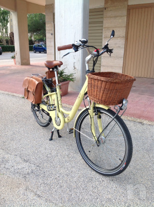 Vendo Bicicletta pedalata assistita  foto-27362