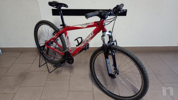 Mountain bike donna/ragazzino foto-14591
