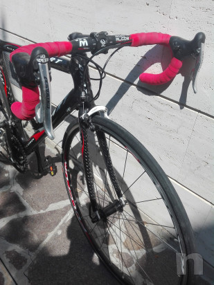 Bici da corsa dart shark carbonio foto-30061