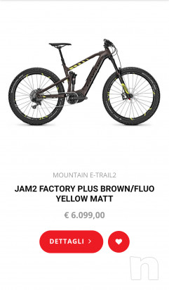 E-Bike Focus Jam2 Tg.L Factory foto-30581