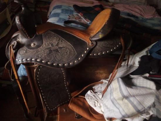 Vendo attrezzatura per andare a cavallo causa in utilizzo  foto-17265