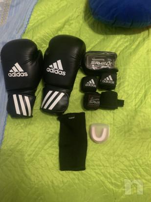 Attrezzatura kick boxing muay thai ecc foto-17429