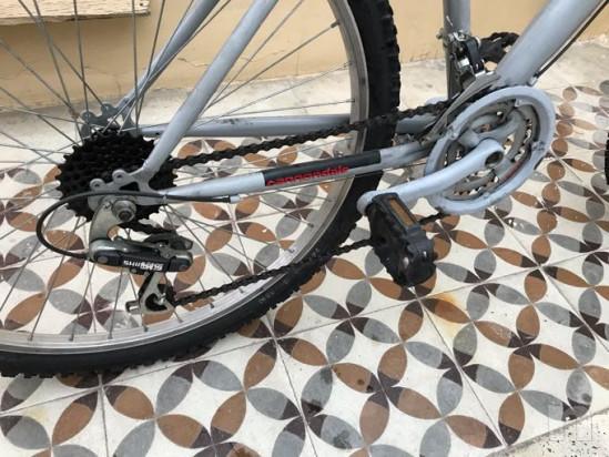Bicicletta foto-33391