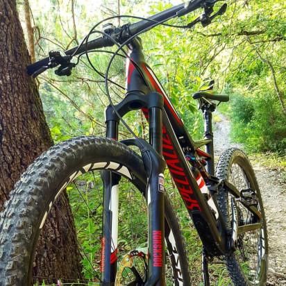 Specialized Stumpjumper FSR Expert Carbon 27 Taglia L foto-33484
