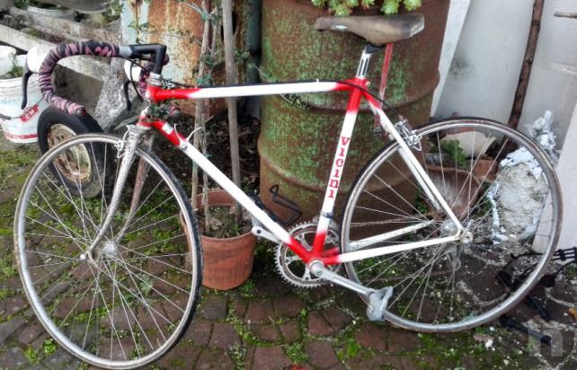 Bicicletta da corsa  foto-17847