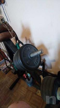 Dischi con gomma fassi sport piu porta dischi bilancieri e manubri foto-37083