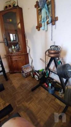 Dischi con gomma fassi sport piu porta dischi bilancieri e manubri foto-37084
