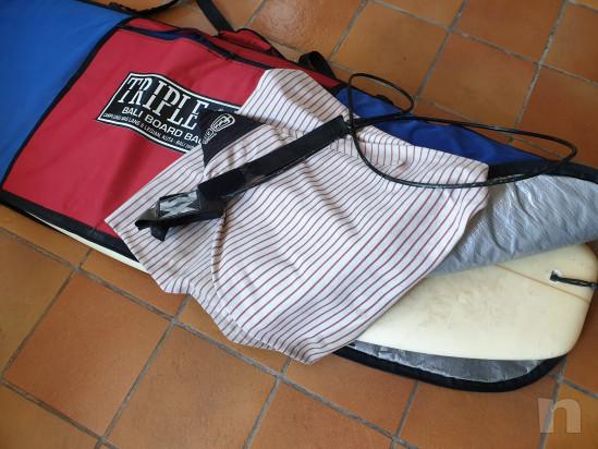 Tavola Surf 5.6
