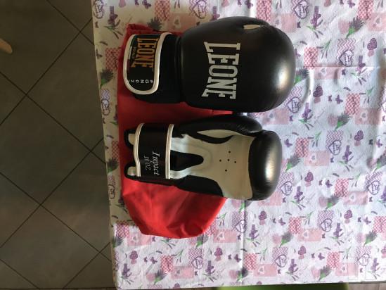 Leone boxe kick-boxing  foto-19370