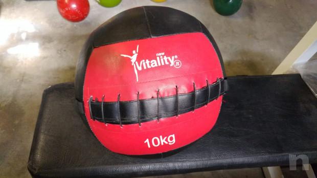 Wall Balla 10 Kg New Vitality foto-20011