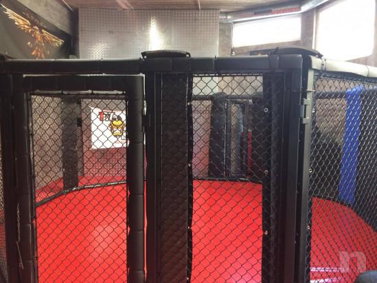 Gabbia ring per MMA nuovissima foto-39045