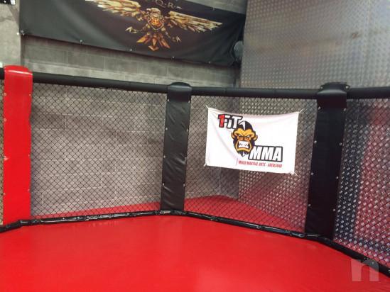 Gabbia ring per MMA nuovissima foto-39044