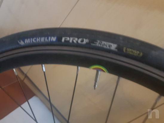 Bicicletta Wilier Triestina Pontevecchio foto-39099