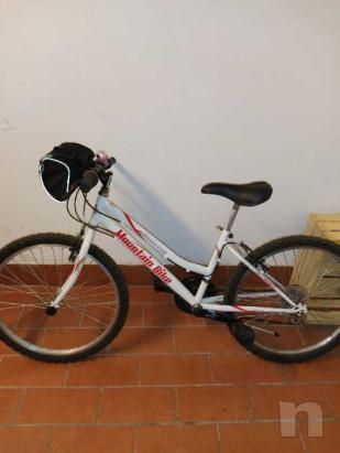 Mountain bike ruota 24 foto-39715