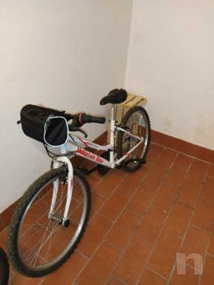 Mountain bike ruota 24 foto-39716