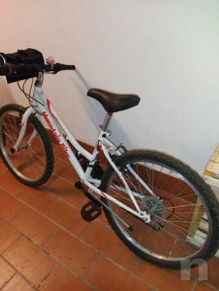 Mountain bike ruota 24 foto-20344