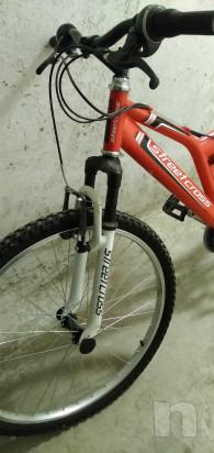 Vendo bici foto-42382