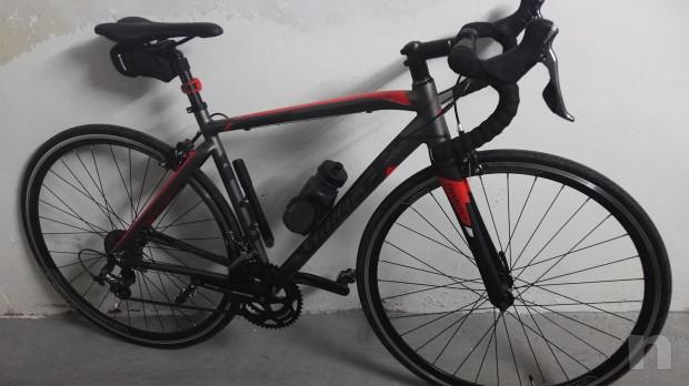 Vendo bici Wilier Triestina Montegrappa foto-21925