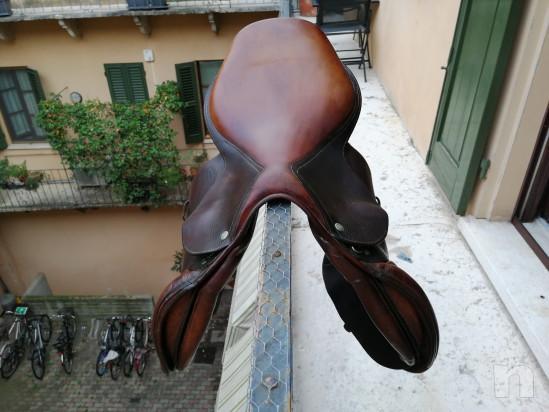 Sella devocoux Biarritz misura 17, testa di moro foto-22183