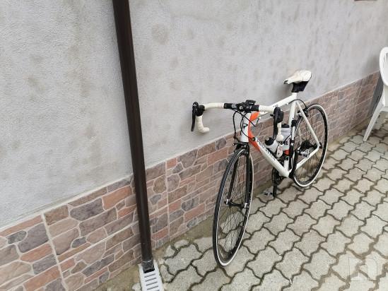 Vendo bici da corsa pinarello foto-43841
