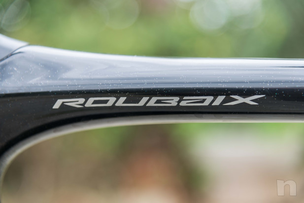 Specialized Roubaix Expert 2019 tg 58