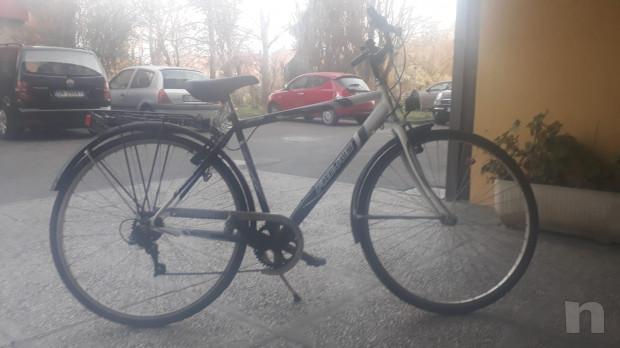 Bicicletta Uomo Frejus foto-23379