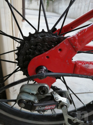 Mountain Bike Carraro ragazzo foto-46464