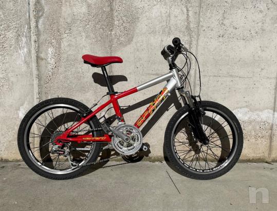 Mountain Bike Carraro ragazzo foto-46462