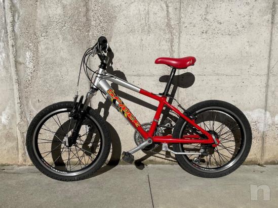 Mountain Bike Carraro ragazzo foto-23478