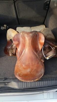 Sella cavallo foto-6996