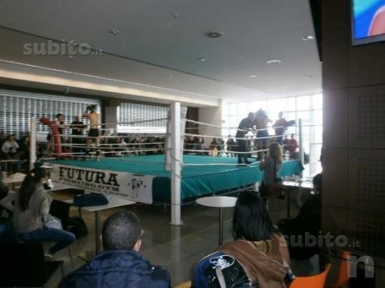 Vendo ring professionale da pugilato e kick boxing foto-441