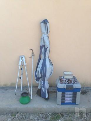 Canne e attrezzature da pesca foto-5269