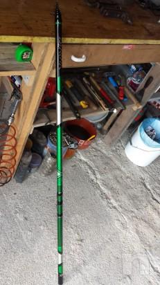 Canna Bolognese Daiwa Tournament X Verde 7mt Pesca In