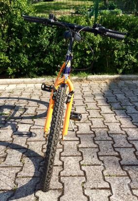 Bicicletta MountainBike foto-12242