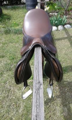 Sella Cavallo Pariani foto-15837