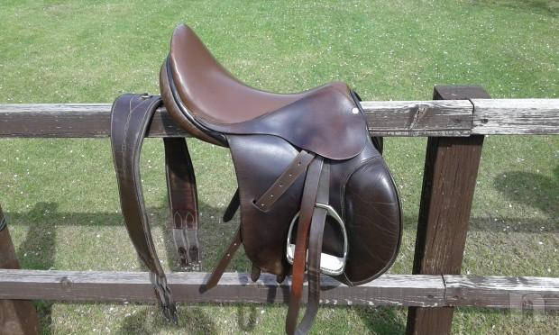 Sella Cavallo Pariani foto-15838