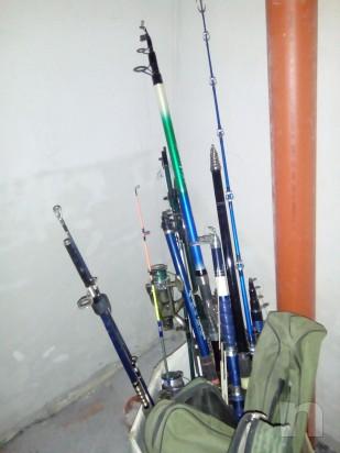 Canne da pesca foto-9585