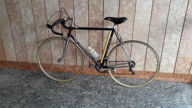 Bicicletta Da Corsa Raphael Geminiani
