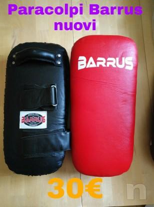 Paracolpi Barrus foto-9968