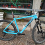 "Trek 29"" full carbon"