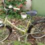 Bicicletta Holland pieghevole