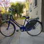 Bicicletta da donna Holland blu