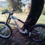 "Bici Norco Aurum Downhill 26"""