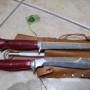 coltelli puma