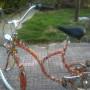 """Biciclette kigo"""" nuove"""