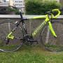 Bici DYNATEK  in carbonio  tg. 54